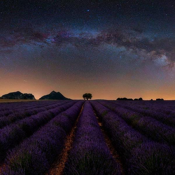 Viaggio fotografico Provenza: un'esplosione di colori tra campi di lavanda, albe e tramonti