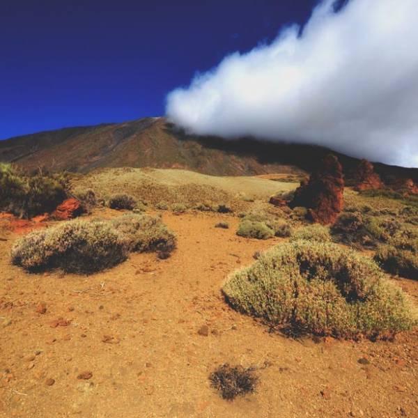 Viaggio fotografico Tenerife: paesaggi lunari sotto uno dei cieli più scuri d'Europa